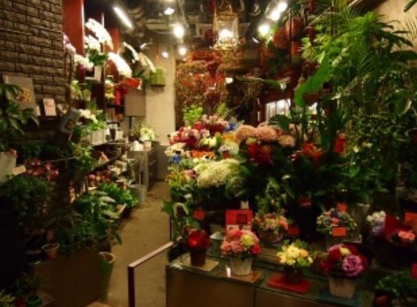 Florist ITO