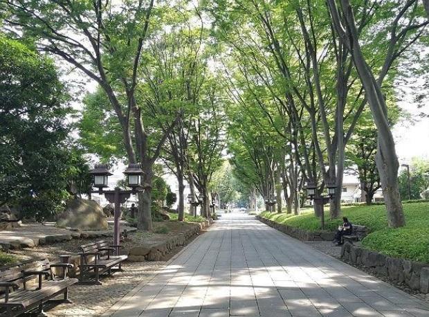 氷川神社の参道