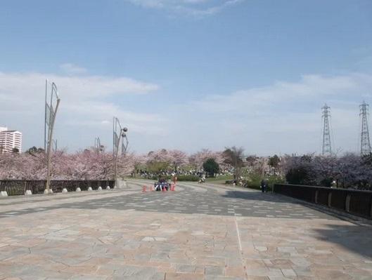 都立大島小松川公園