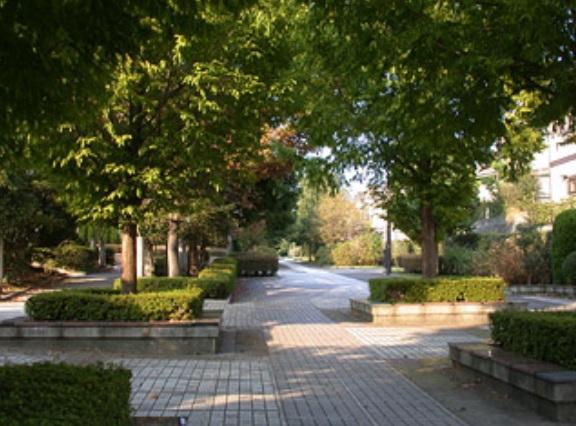 緑園都市の遊歩道