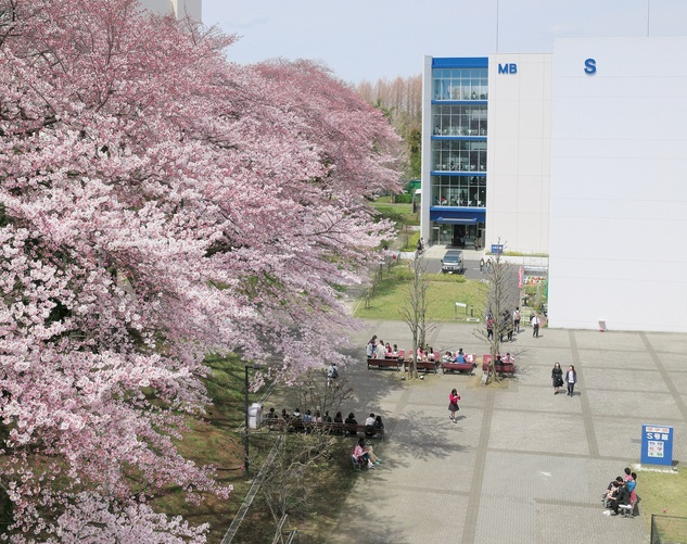 北里大学相模原キャンパス
