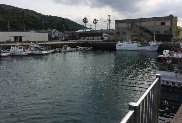 日向市細縞漁港
