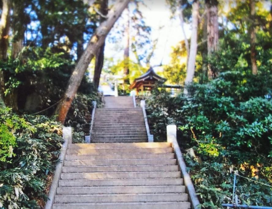 石尊阿夫利神社